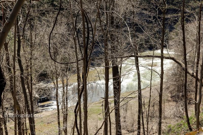 Letchworth Lower Falls 1