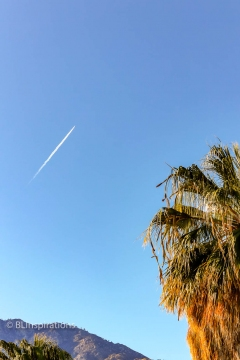Contrail over Palm Springs