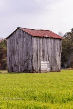 Johnston County, NC Tobacco Barn 4