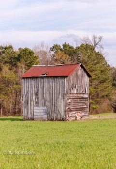 Johnston County, NC Tobacco Barn 5