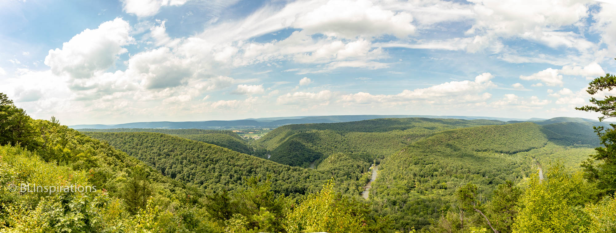 Penns Creek from Penns View